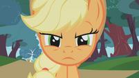 Applejack serious face2 S01E04
