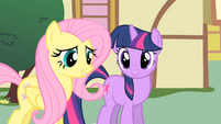 Fluttershy --I shouldn't have jumped to conclusions-- S01E22