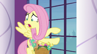 Fluttershy -courtyard is full of swans- S9E13