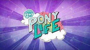 Pony_Life_theme_song_-_Polish_(audio_only)