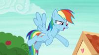 "Rainbow Dash ""seriously?"" S8E9"