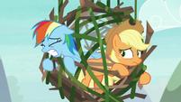 Rainbow Dash trying to break free S8E9