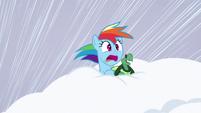 Rainbow and Tank inside the snow S5E5