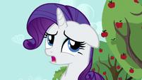 Rarity --Applejack and I haven't-- S6E10