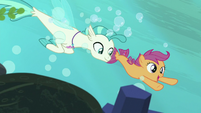 Scootaloo and Terramar swimming together S8E6