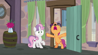 Scootaloo shouting -the cupcake has landed!- S7E8
