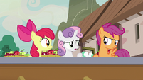 """Sweetie Belle """"how many spies do you know?"""" S7E8"""