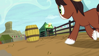 Young Trouble Shoes gallops toward a barrel S5E6