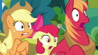 Apple siblings in complete shock S7E13