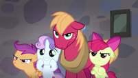 Big Mac, Apple Bloom, and Scootaloo mad; Sweetie Belle smiling S7E8