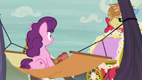Feather Bangs' carriage knocks Big Mac out of the way S7E8