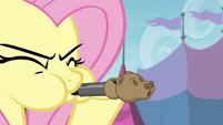 Fluttershy blowing bear whistle S4E22