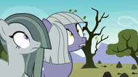 Limestone and Marble see Pinkie dive at them S8E3