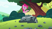 Pinkie Pie holding a rock S4E18