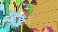 "Rainbow ""did I interrupt your fan club meeting?"" S8E20"