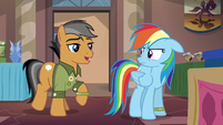 Rainbow Dash encounters Quibble again S6E13