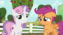 "Scootaloo ""you must have been really upset"" S6E19"