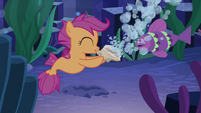 Scootaloo blows bubbles with the shell S8E6