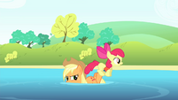 Apple Bloom on Applejack's hind legs S4E20
