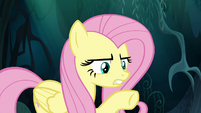 """Fluttershy """"do exactly what I say"""" S6E11"""