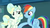 Rainbow Dash lightly punches Vapor Trail S6E24
