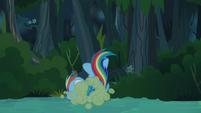Rainbow Dash tossed aside S4E04