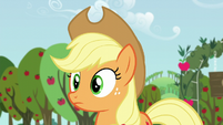 Applejack looks at Big Mac S5E17