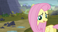 """Fluttershy """"there isn't enough food here for you!"""" S5E23"""