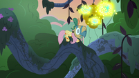 Fluttershy slides up to the flash beehive again S7E20