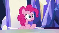 Pinkie Pie -Zecora needed somepony- S8E21
