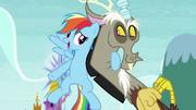 S05E22 Rainbow Dash ze swoim kumplem.png