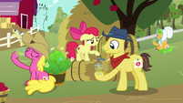 Apple Bloom pours cider for a Sweet Apple Admirer S7E14