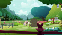 Fluttershy and animal friends behind her house S7E19