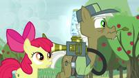 Pest pony hears Apple Bloom repeat what he said S5E04