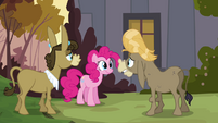 "Pinkie Pie, Cranky, and Matilda ""I never told you about her"" S02E18"