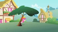 Pinkie Pie underneath tree S1E15