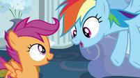 """Rainbow Dash """"I'm all over it!"""" S6E14"""