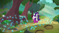 Rarity notices the trail of footprints S8E17
