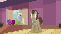 Derpy -I'll use them for the wedding!- S5E9