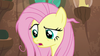 """Fluttershy """"I'm the only pony you can talk to"""" S9E18"""