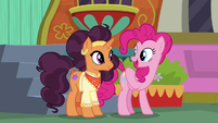 """Pinkie """"the most unique and beautiful restaurant"""" S6E12"""
