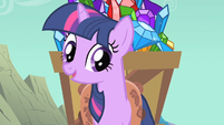 Twilight just because somepony S1E19