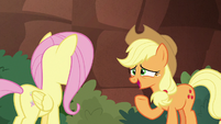 "Applejack ""caught up in the adventure"" S8E23"