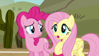 """Fluttershy """"I don't know how much practice you'll get"""" S6E18"""