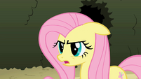 Fluttershy 'I can do this' S2E01