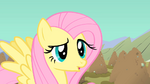 Fluttershy has a questioning look S1E19