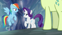 Rainbow Dash and Rarity look disappointed S8E22