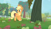 Applejack looks at the rotten apples S4E07