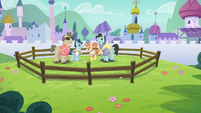 Polo ponies playing in a closed pen S5E10