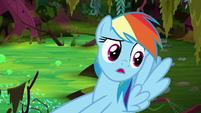 """Rainbow Dash """"I found a bigger clue!"""" S8E17"""